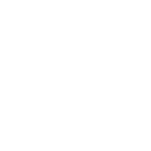 Driving Icon